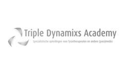 praktijkvoordeel-triple-dynamics